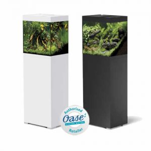 oase stlye line 2