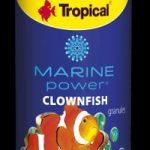 tropical marine power clownfish