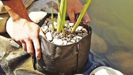 Košara za sadnju bilja okrugla